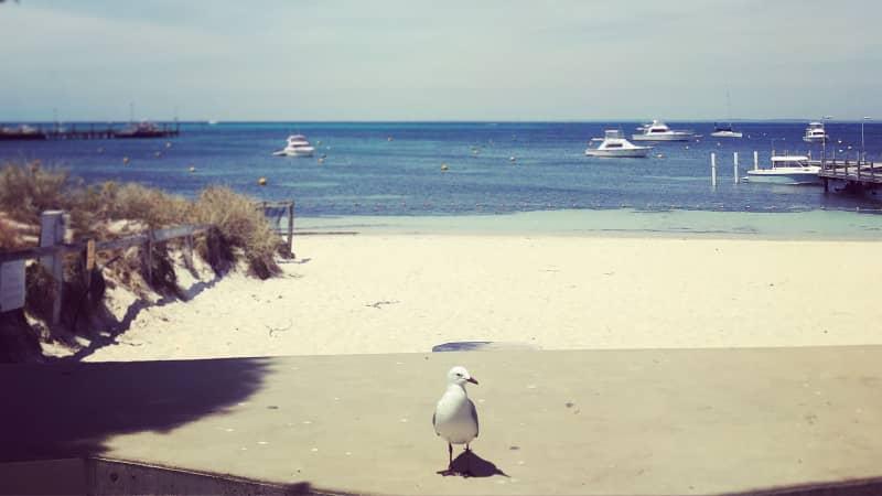 Western Australia's Rottnest Island is a car-free  A-class nature reserve.