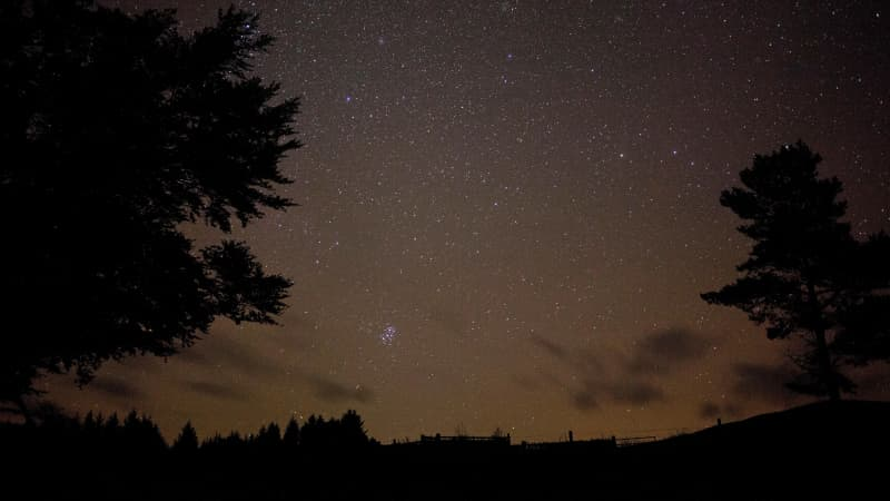 Galloway Forest is home to Britain's only Dark Sky Park.