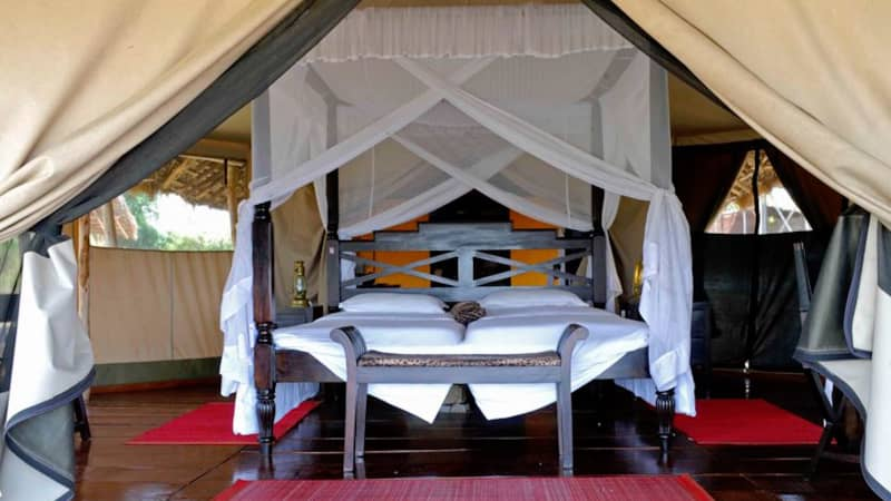 The Bison offers guests a variety of luxury tents to choose from.
