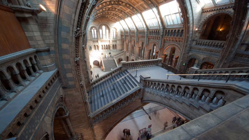 Considered one of the world's best natural history museums, London's also boasts breathtaking architectural interiors.