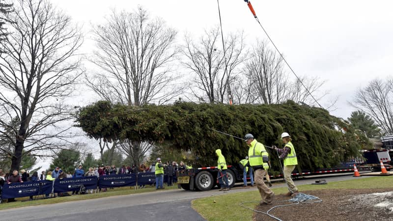 The next Rockefeller Center Christmas tree is off to Manhattan. It was cut down Thursday and will arrive at 30 Rock on Saturday.