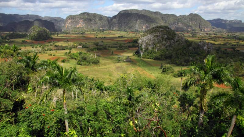 The Viñales Valley is a UNESCO World Heritage Site.