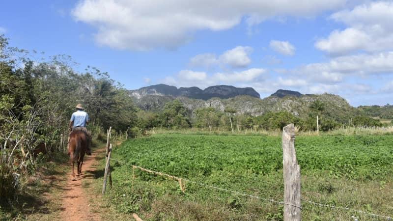 Visitors can tour tobacco farms in the province of Pinar del Rio.