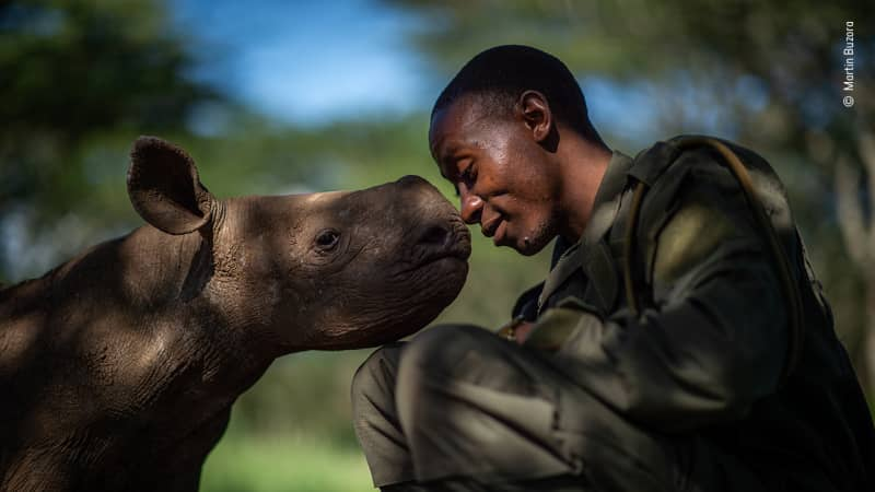 This shot of a ranger and a young rhino in Kenya was also shortlisted.