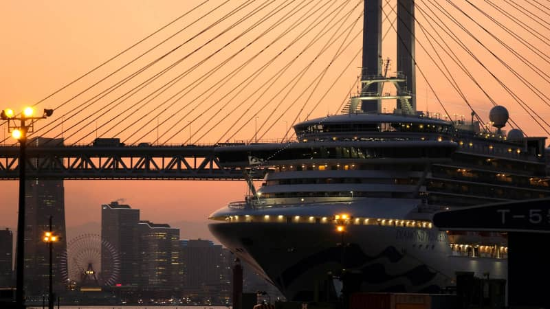Nearly 20% of those on board the Diamond Princess became ill.