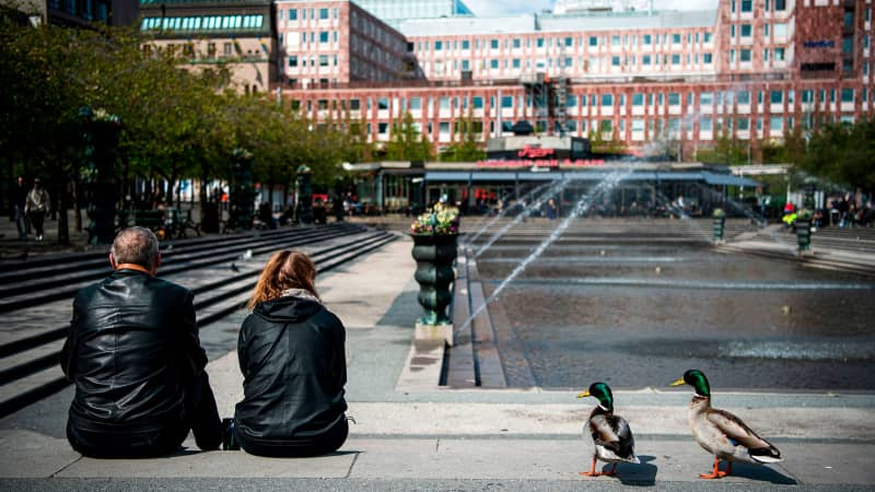 Two ducks stand next to a couple as they enjoy the warm weather at the Kungstradgarden in Stockholm on May 8, 2020, amid the new coronavirus COVID-19 pandemic