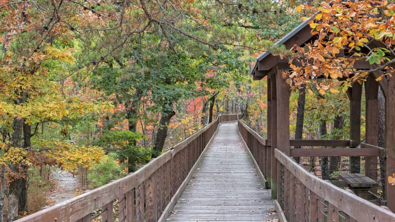 Cheaha State Park is a great place to see fall color in Alabama.