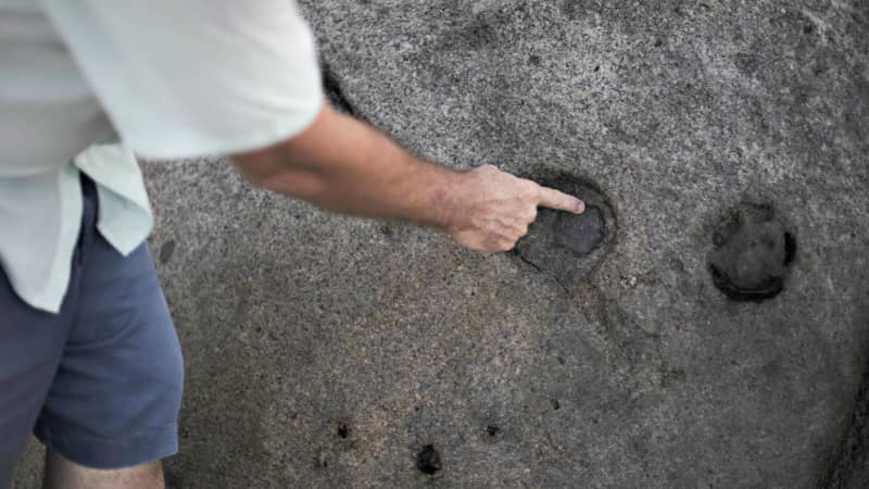 John Cruise-Wilkins points to markings on a rock he says is a clue in his treasure hunt.