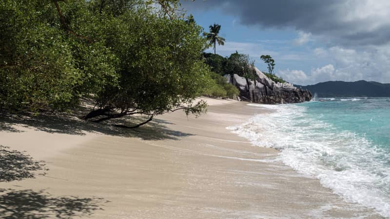 A picture taken on November 21, 2019, shows a nesting beach of hawksbill turtles in Cousin Island, a nature reserve island managed by Nature Seychelles, a national environmental NGO, Seychelles