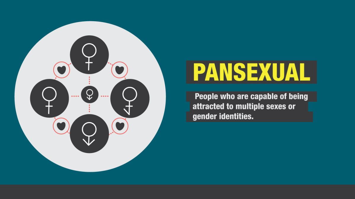 Pansexual Definition Cultural Context And More