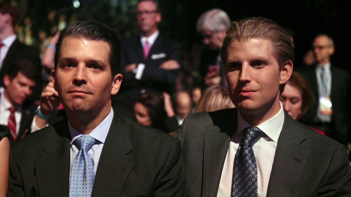 Image result for donald trump jr and eric trump