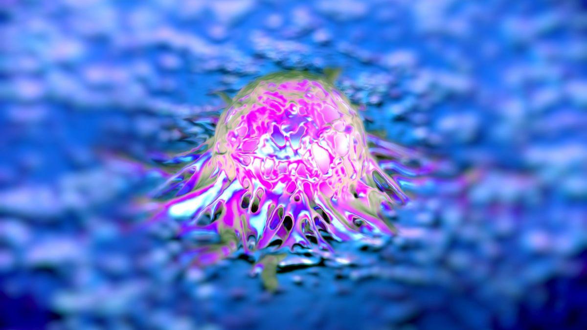 Australian researchers develop 10-minute cancer test