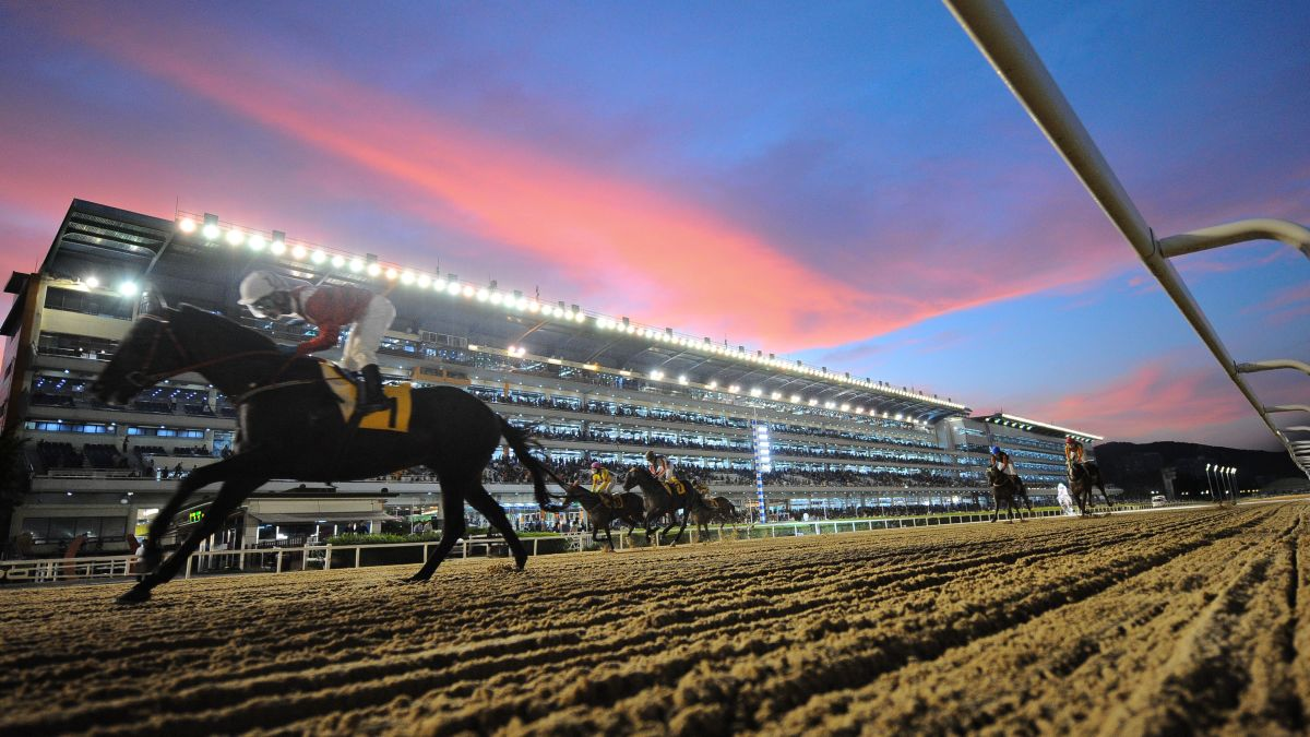South Korea becoming an unlikely hub for horse racing | CNN