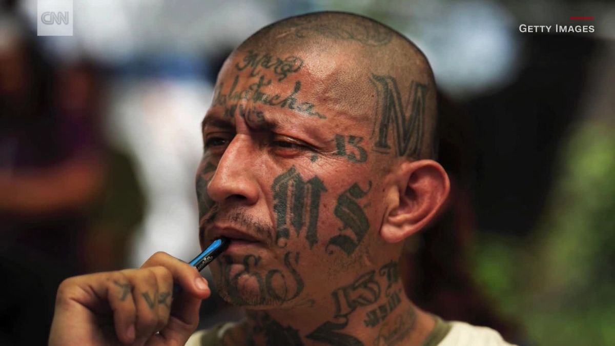 MS-13 gang members: Trump makes MS-13 gang stronger - CNN