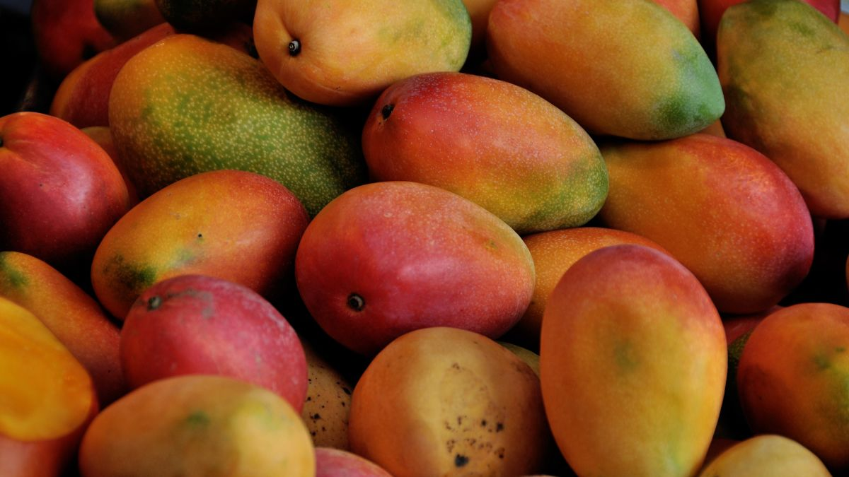 Needle found in mango in latest chapter of Australia fruit