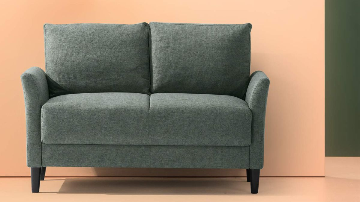 Small Couches These Loveseats