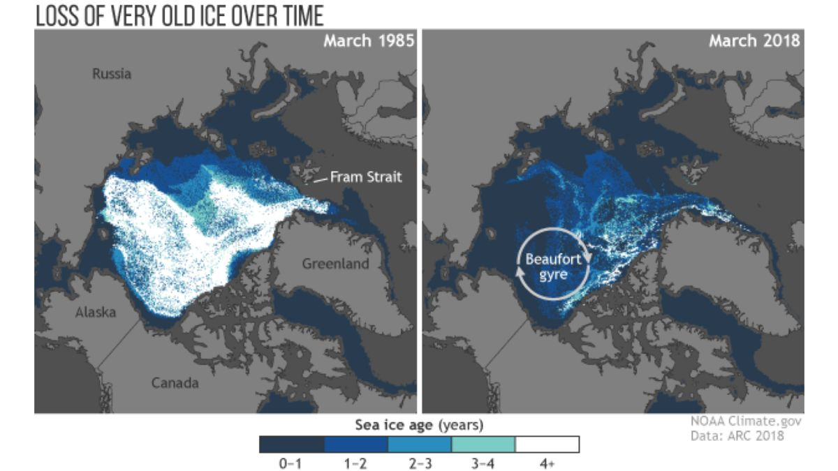 Unparalleled warmth is changing the Arctic and affecting weather in