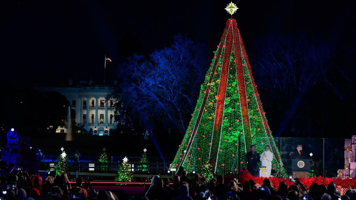 Watch National Christmas Tree Lighting 2020 Cnn Man climbs National Christmas Tree   CNNPolitics