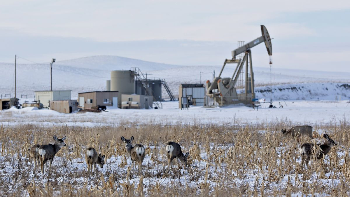 cnn.com - By Ivana Kottasová, CNN Business - America's oil boom is terrible for the climate