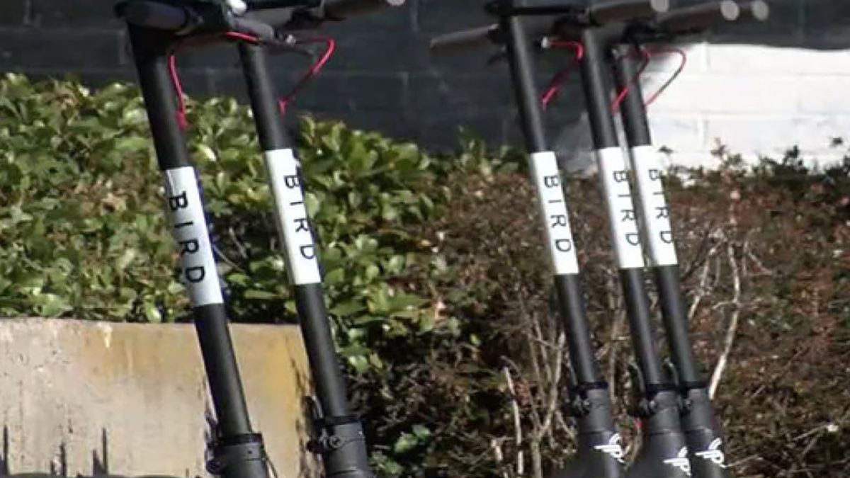 Bird scooters got kicked out of San Francisco but found a loophole