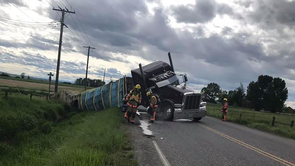 Semi-truck crashes carrying 40,000 pounds of bees - CNN