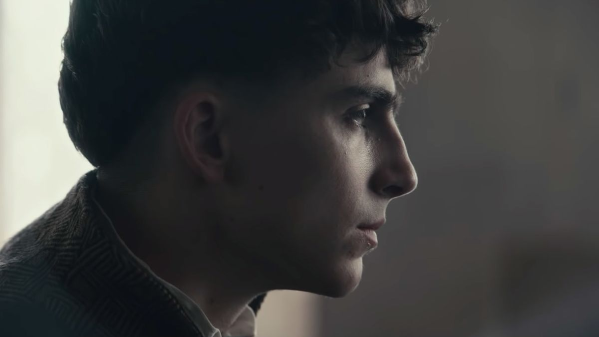 Timothée Chalamet takes the throne in 'The King' trailer - CNN