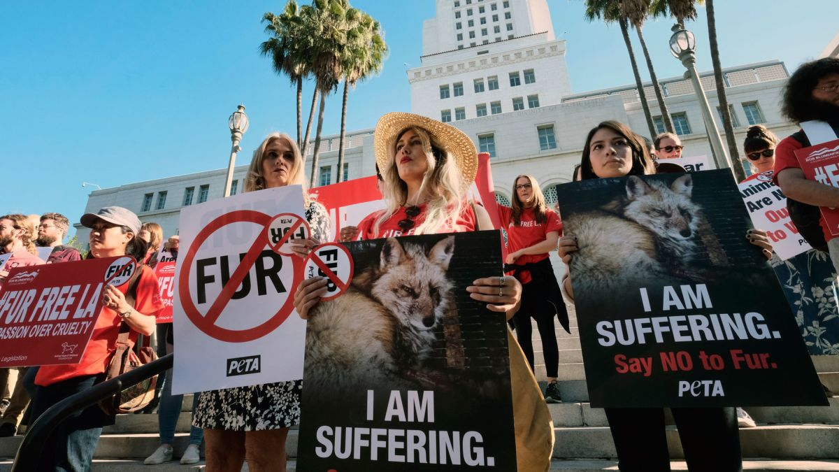 California Becomes The First State To Ban Animal Fur Products Cnn