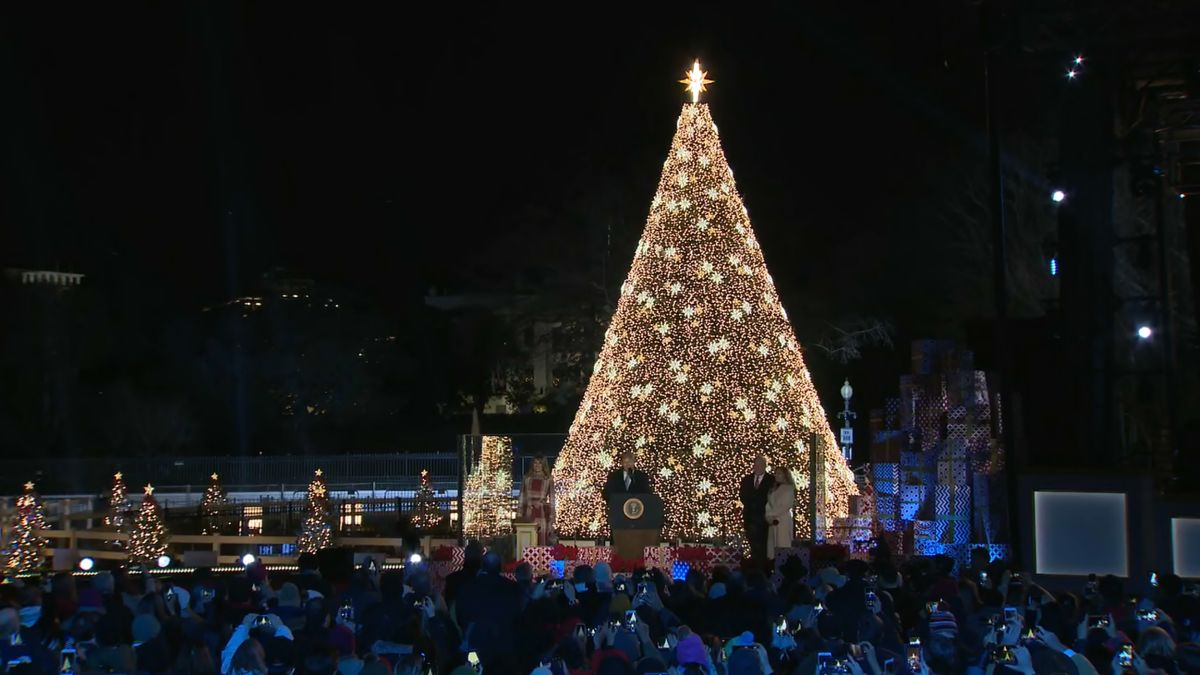 2020 National Christmas Tree Trump lights National Christmas Tree to mark holiday season