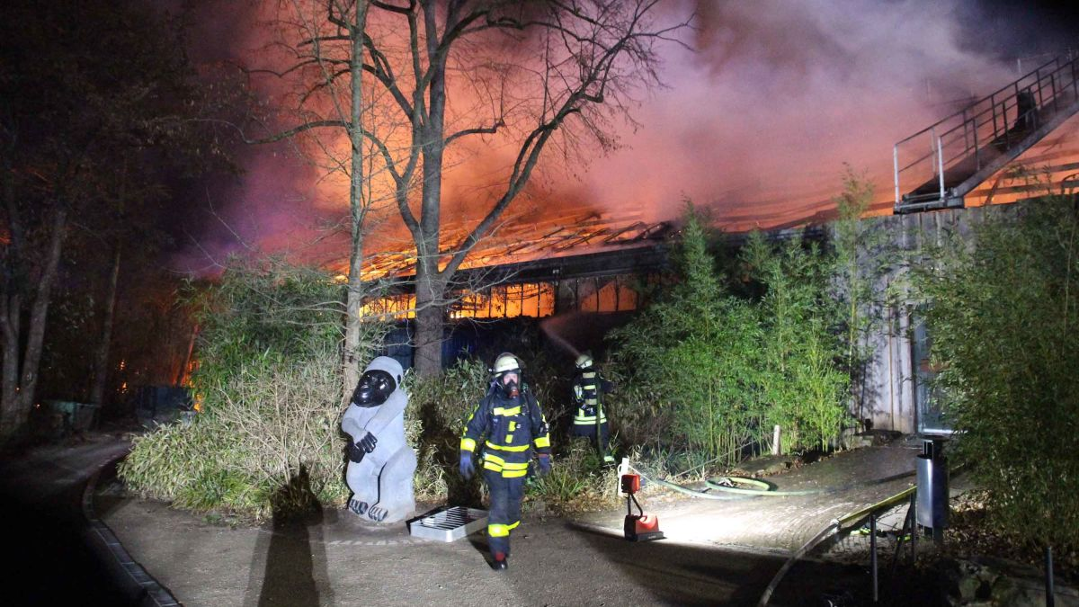 Fire At German Zoo Kills Scores Of Animals
