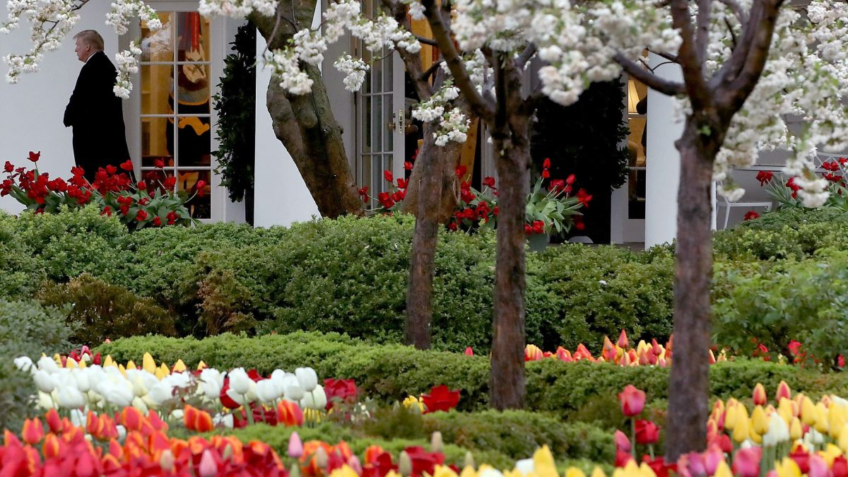 Newly Renovated White House Rose Garden To Be Unveiled Next Week Cnnpolitics