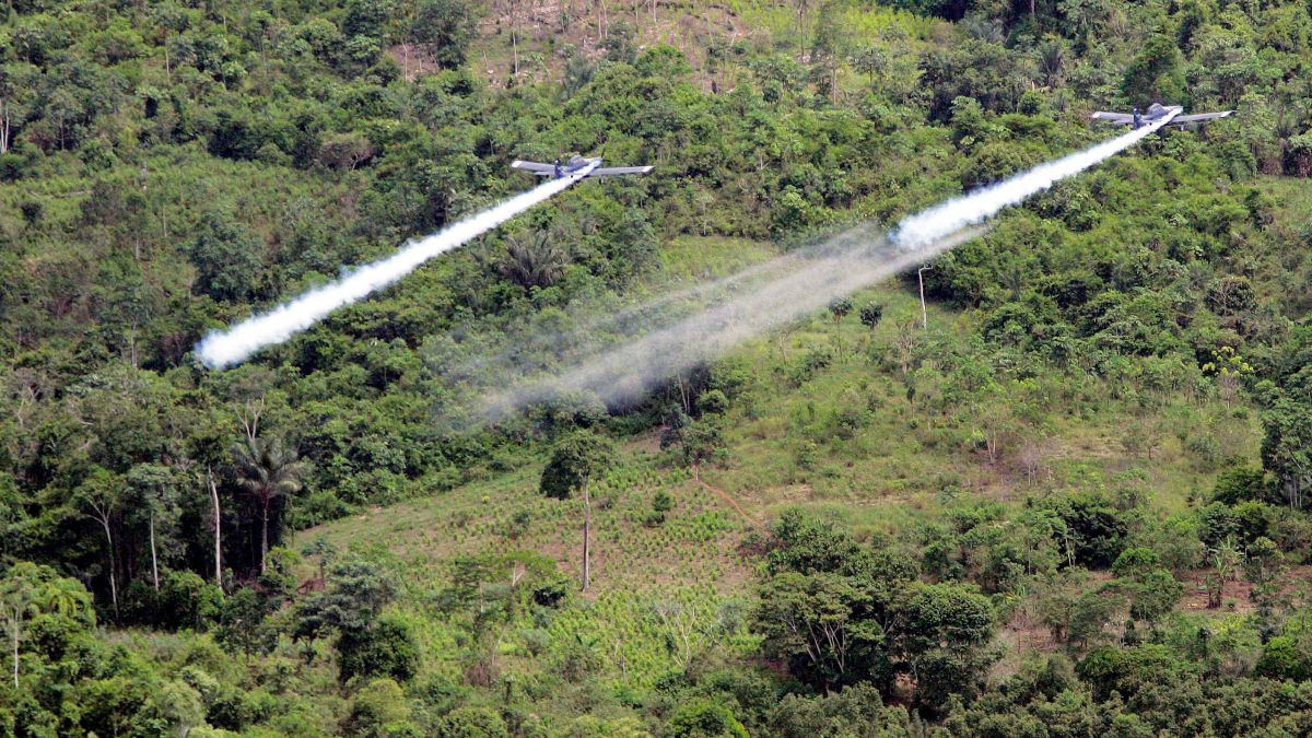Colombia wants to resume spraying a toxic chemical to fight cocaine. Critics say it's too risky - CNN