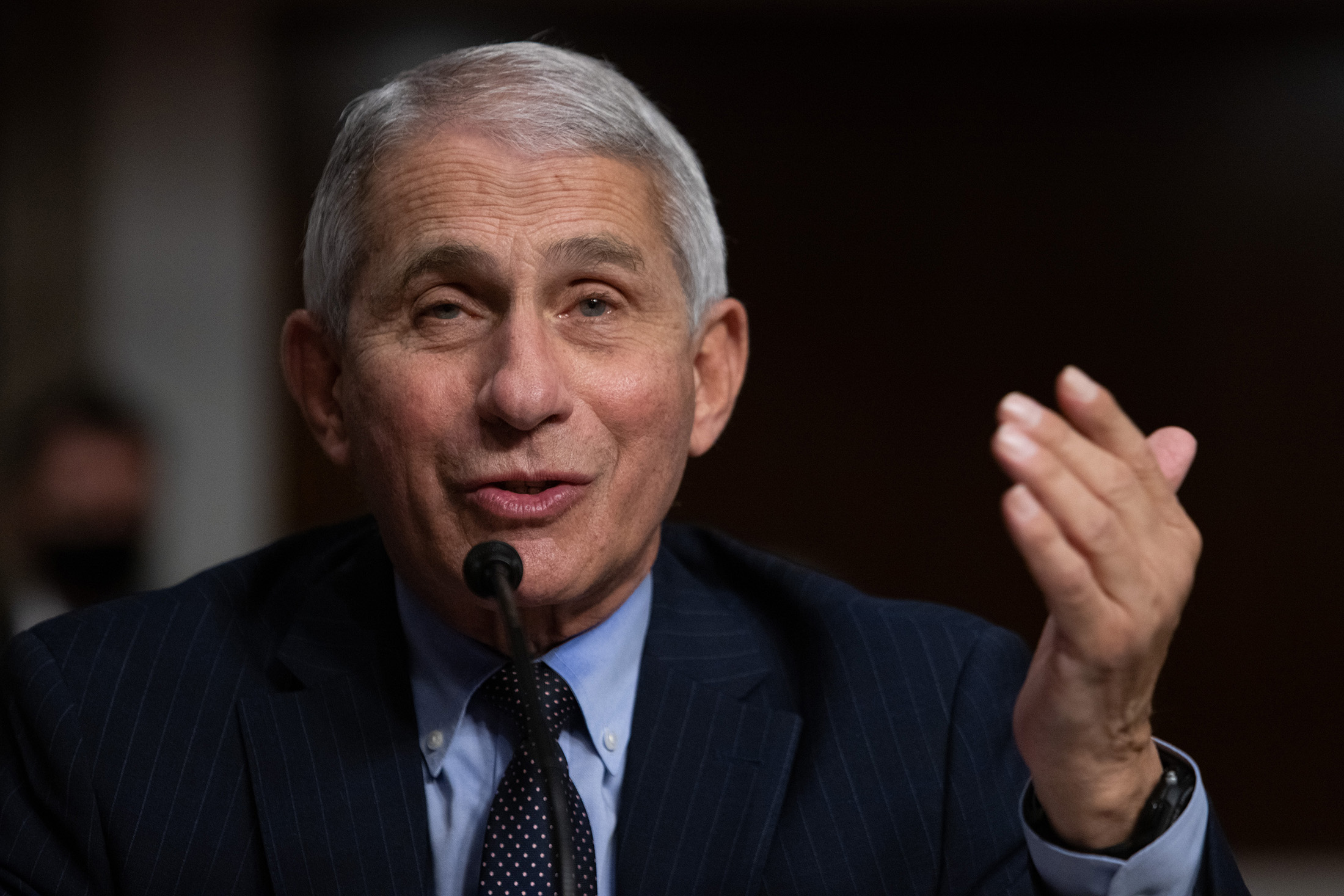 Anthony Fauci, director of the National Institute of Allergy and Infectious Diseases, speaks during a  committee hearing in Washington, D.C, on Wednesday, September 23.