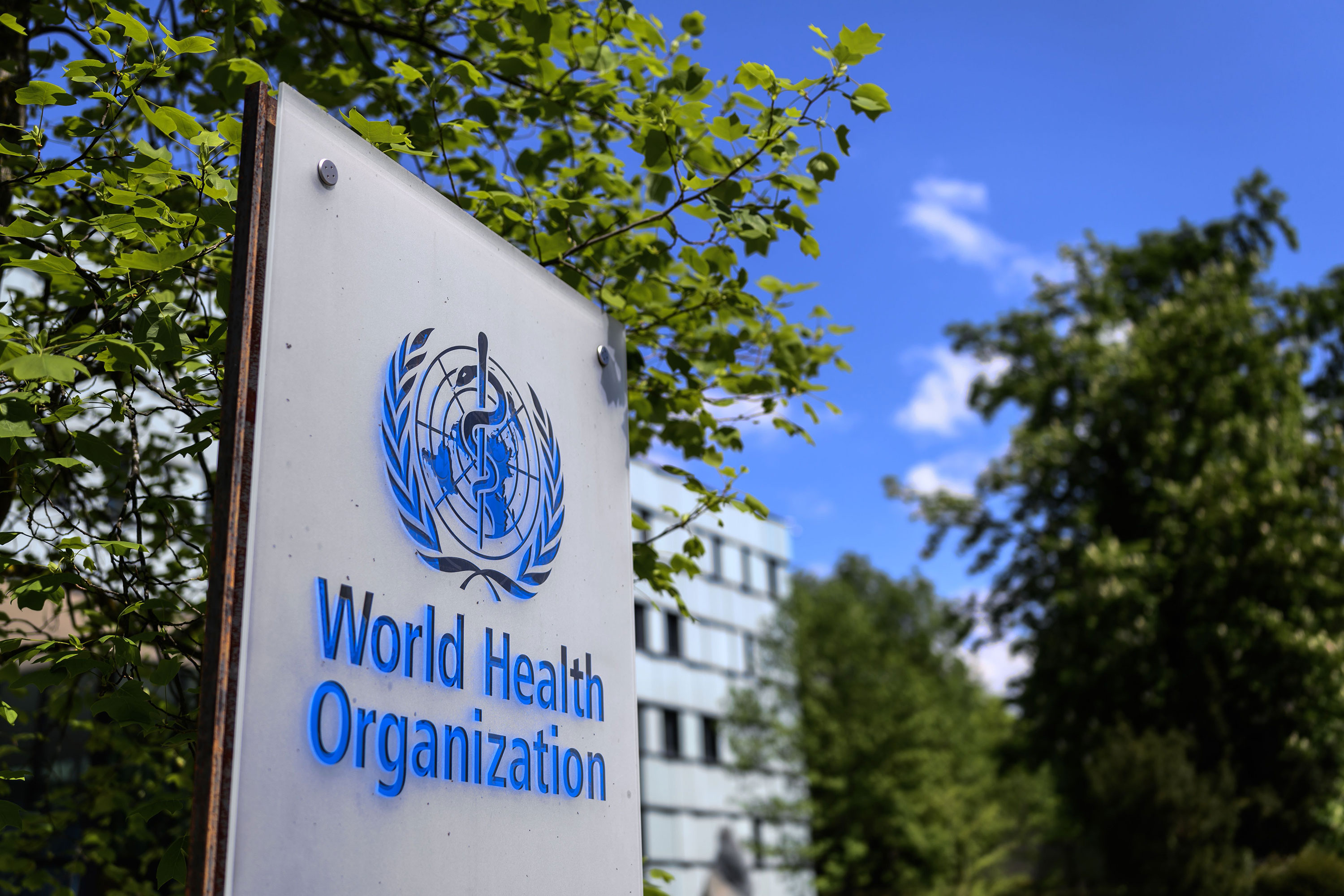 The World Health Organization's World Health Assembly will be held virtually from May 18-19.