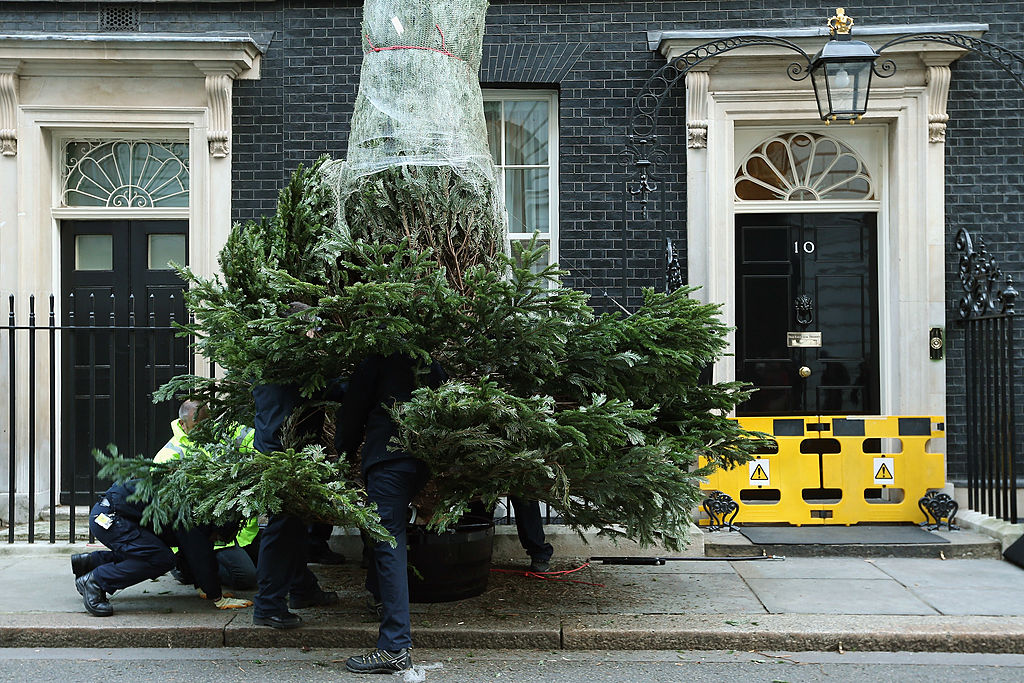 A Christmas tree is set up outside Downing Street in 2012.