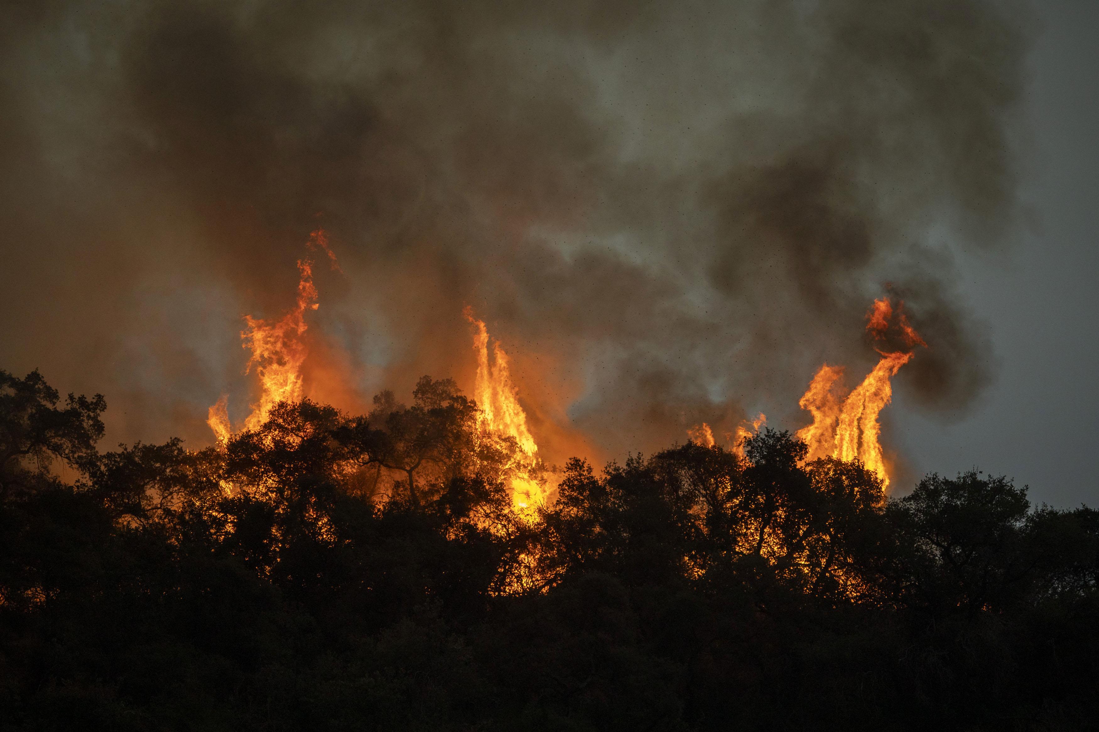 The Bobcat Fire burns near homes in Arcadia, California, on September 13.