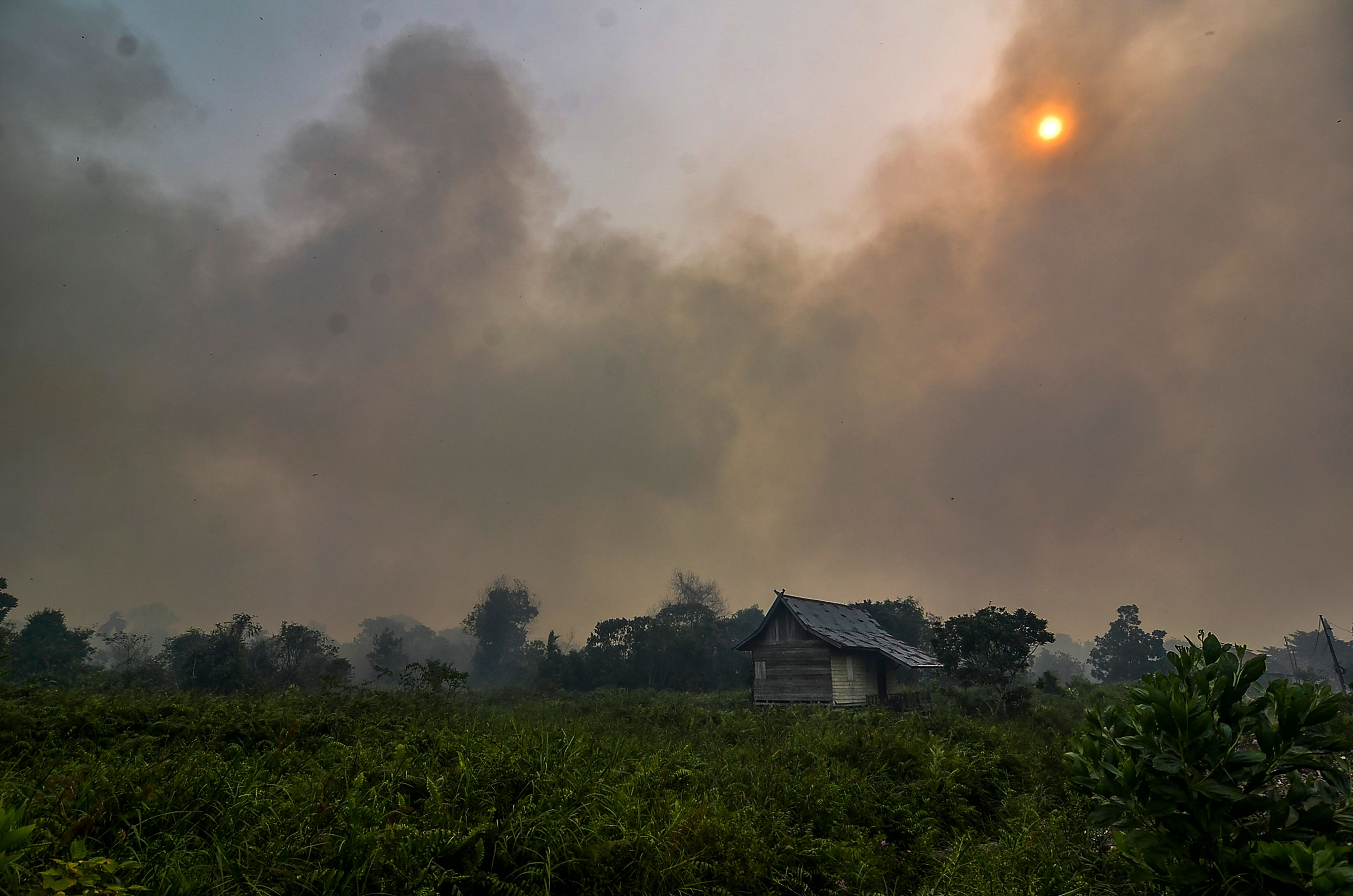 Thick smoke from a forest fire nearly covers the sun over Pekanbaru in Riau province on September 18, 2019.