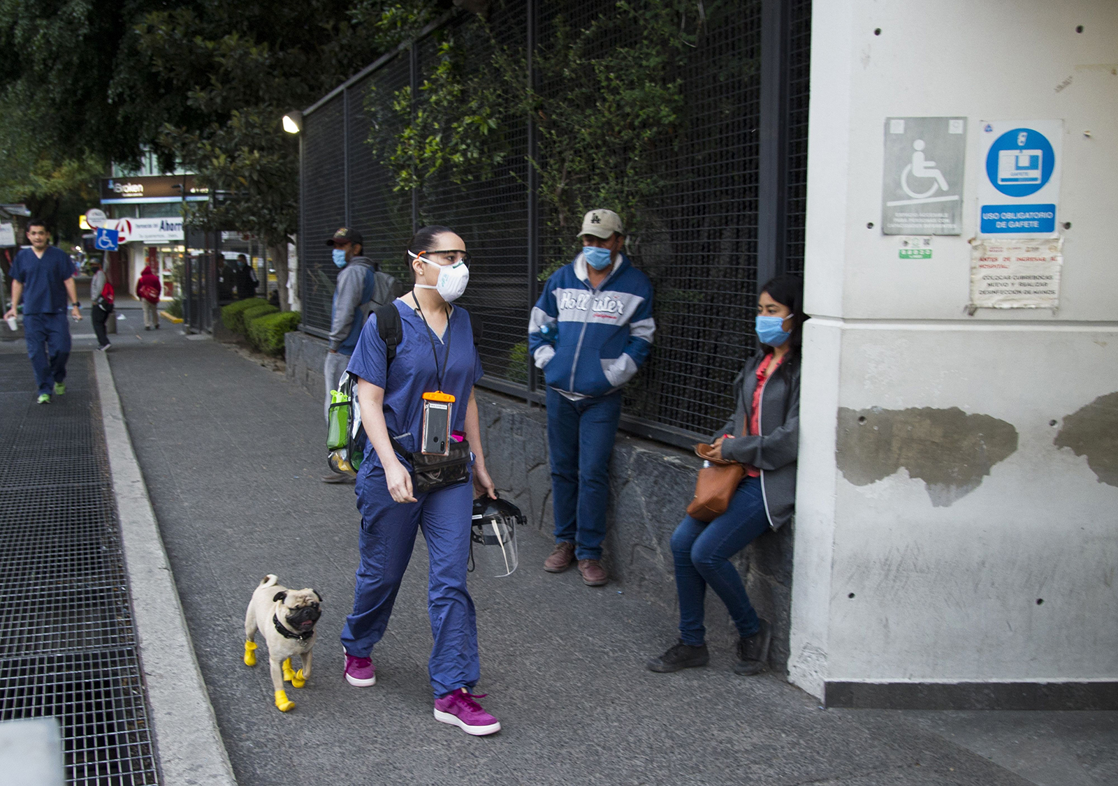 Psychologist and neuropsychologist Lucia Ledesma Torres and her dog Harley, arrive at a hospital in Mexico City, on May 13.