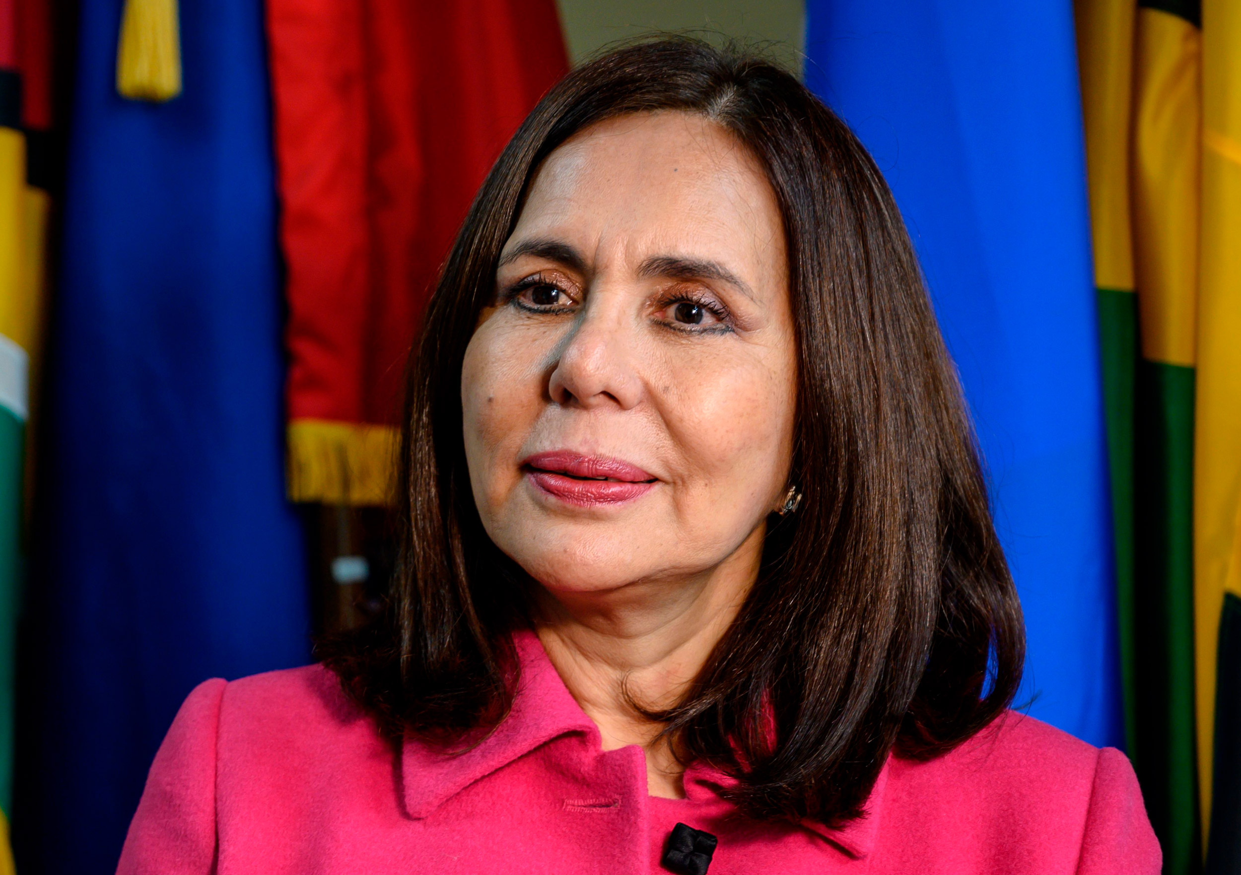 Bolivian Foreign Minister Karen Longaric speaks during an interview at the Organization of American State in Washington, DC on January 23.