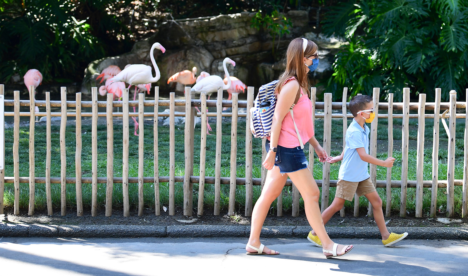 Visitors wearing face masks walk past a display of Pink Flamingos at the Los Angeles Zoo as it reopens on August 26, in Los Angeles, California.