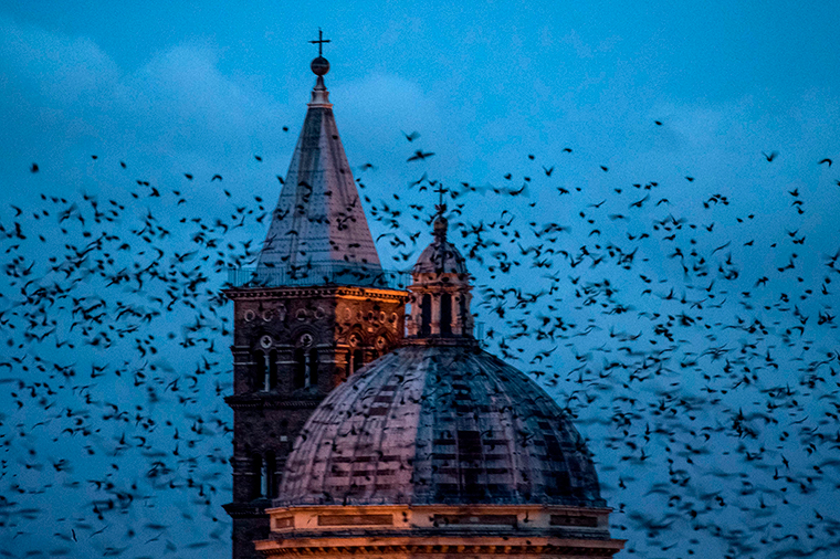 The Basilica Santa Maria Maggiore, popular with tourist, is seen in Rome on December 20, 2019.