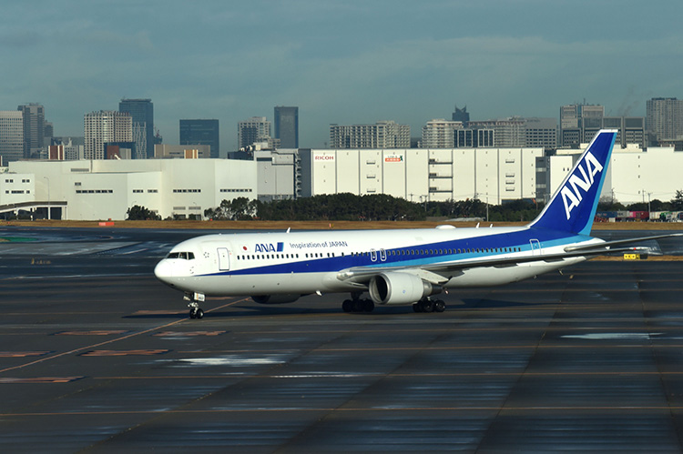 The first charter flight from the Chinese city of Wuhan, which was arranged by Japan's government to evacuate its citizens, lands at Haneda airport in Tokyo.