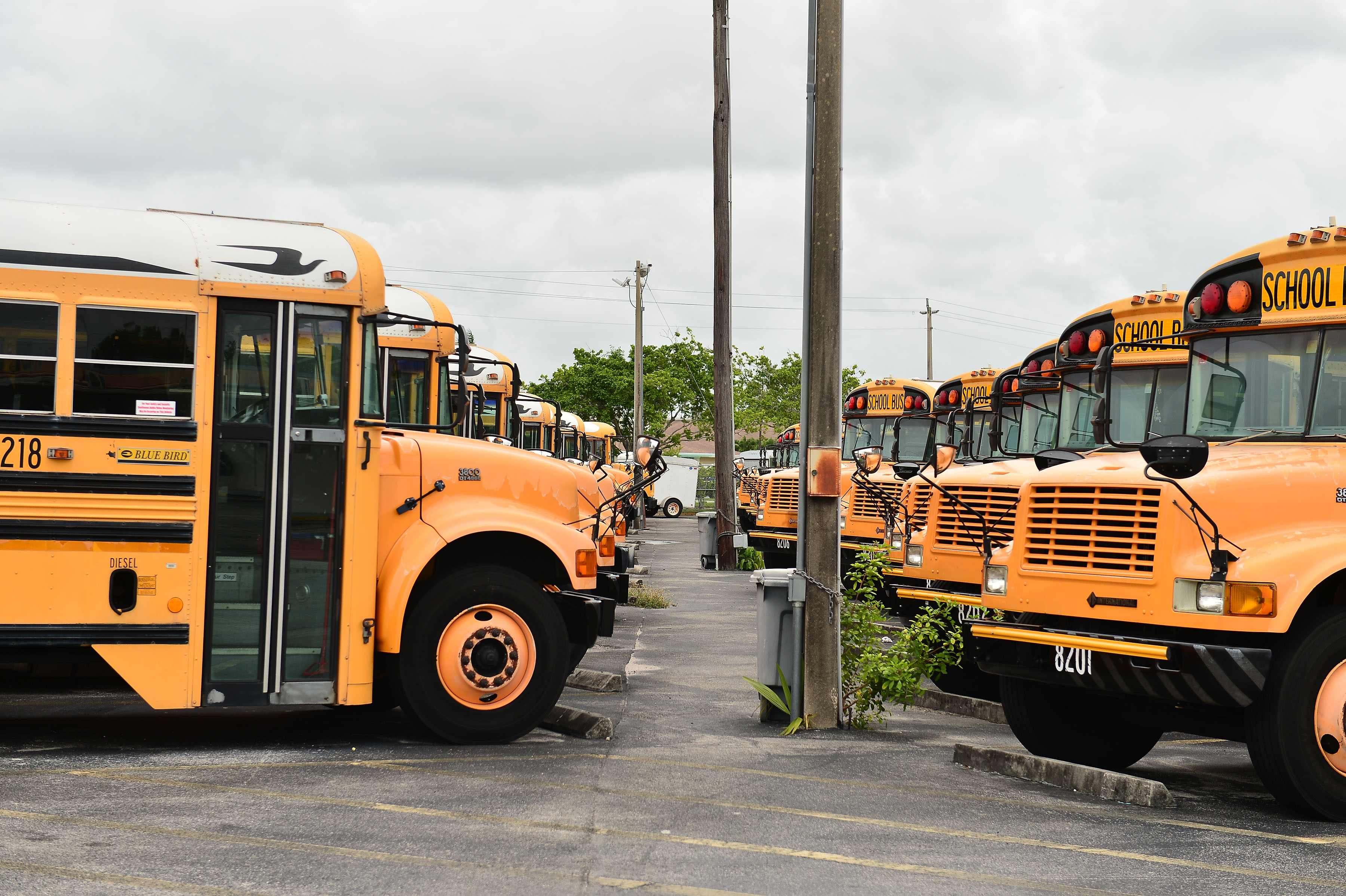 A fleet of Broward County school buses are parked in a lot in Pembroke Pines, Florida, on July 21.