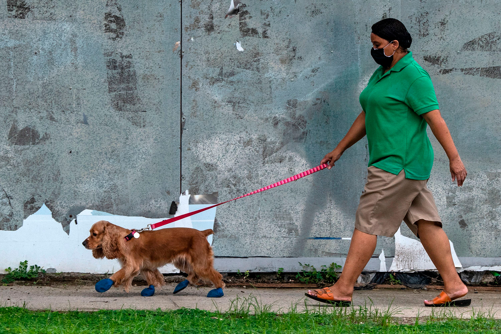 A woman wearing a face mask walks with her dog in a street of Panama City, on June 8.