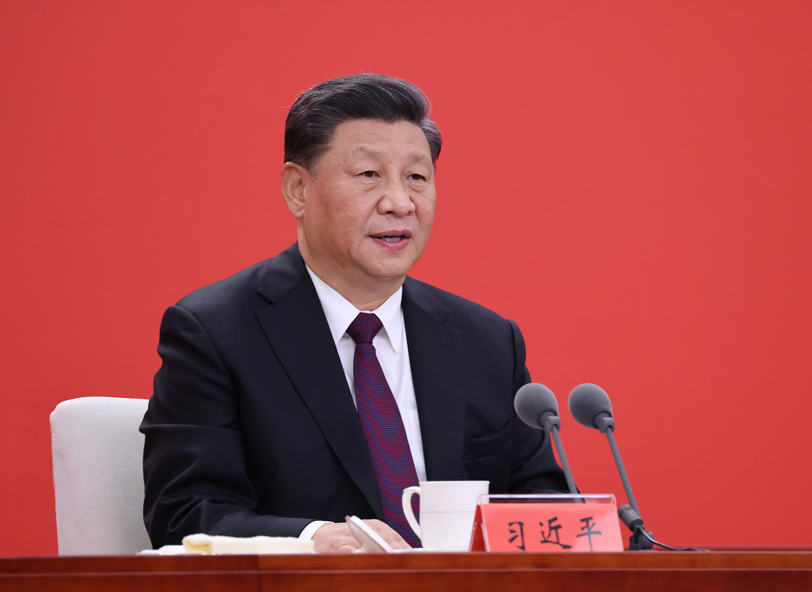 Chinese President Xi Jinping delivers a speech in Shenzhen, Guangdong province, on October 14.