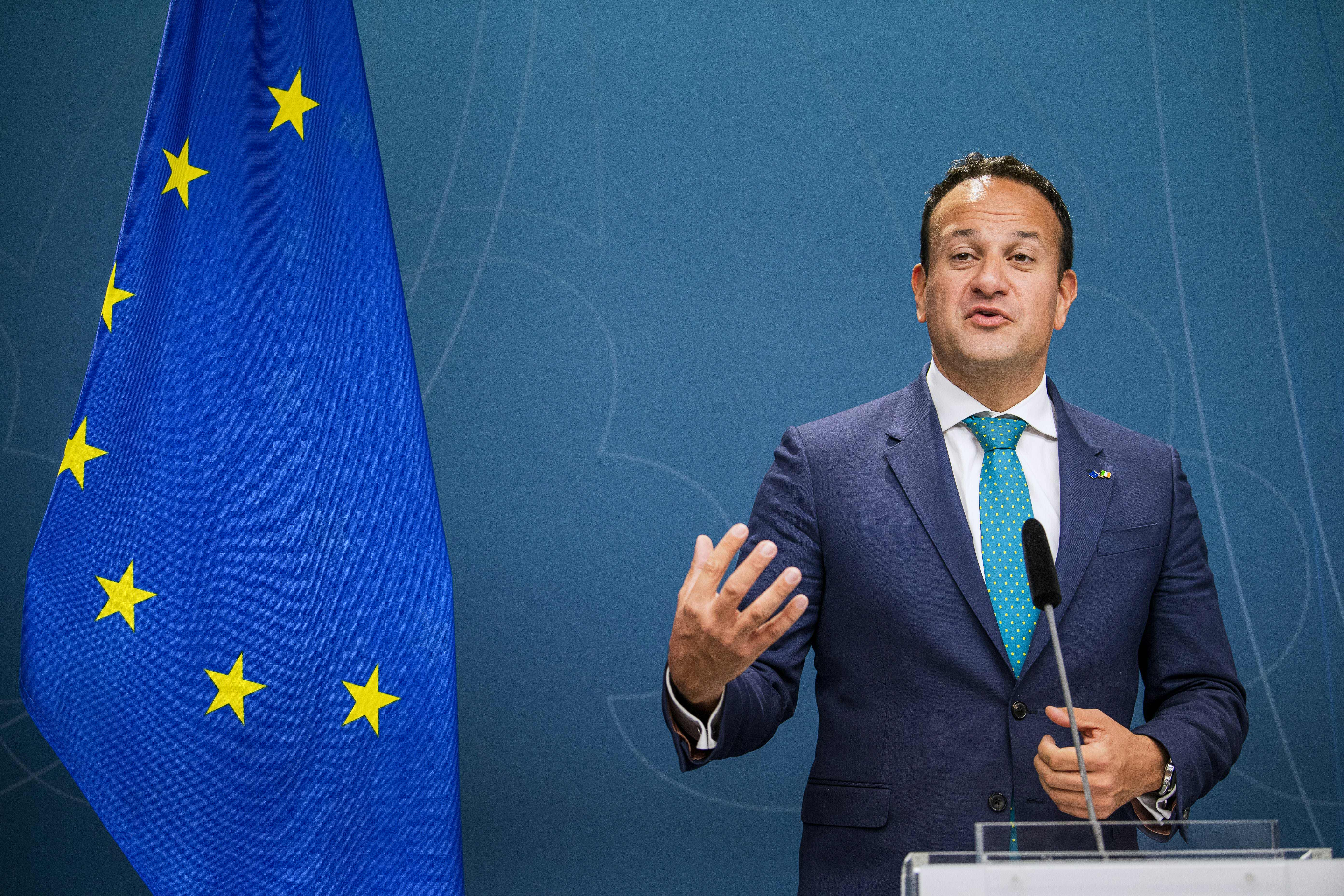 Leo Varadkar said there was a contradiction between Johnson's words and what was in the submitted papers.