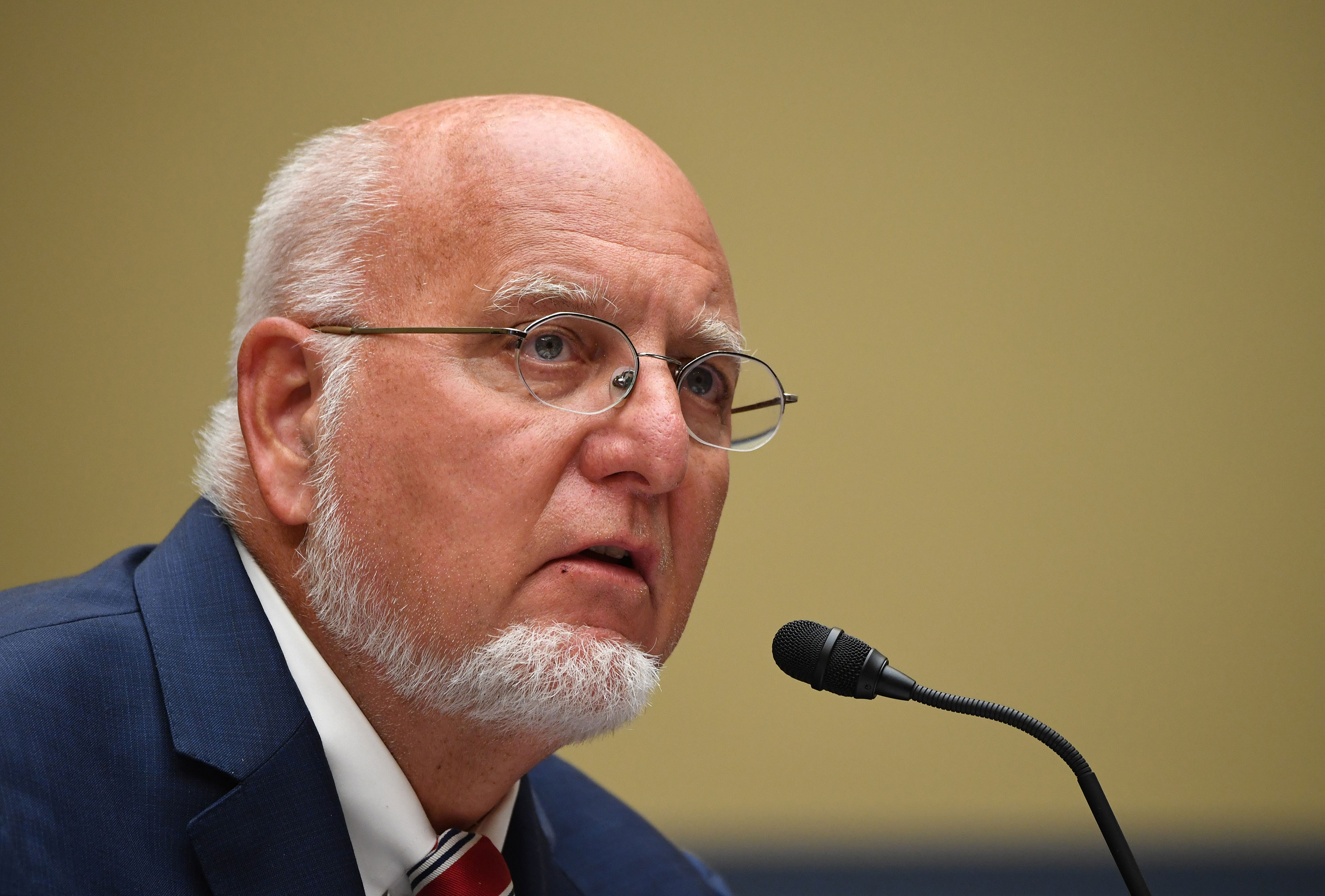 CDC Director Dr. Robert Redfield testifies at a House Subcommittee on the Coronavirus Crisis hearing on Capitol Hill on July 31 in Washington, D.C.