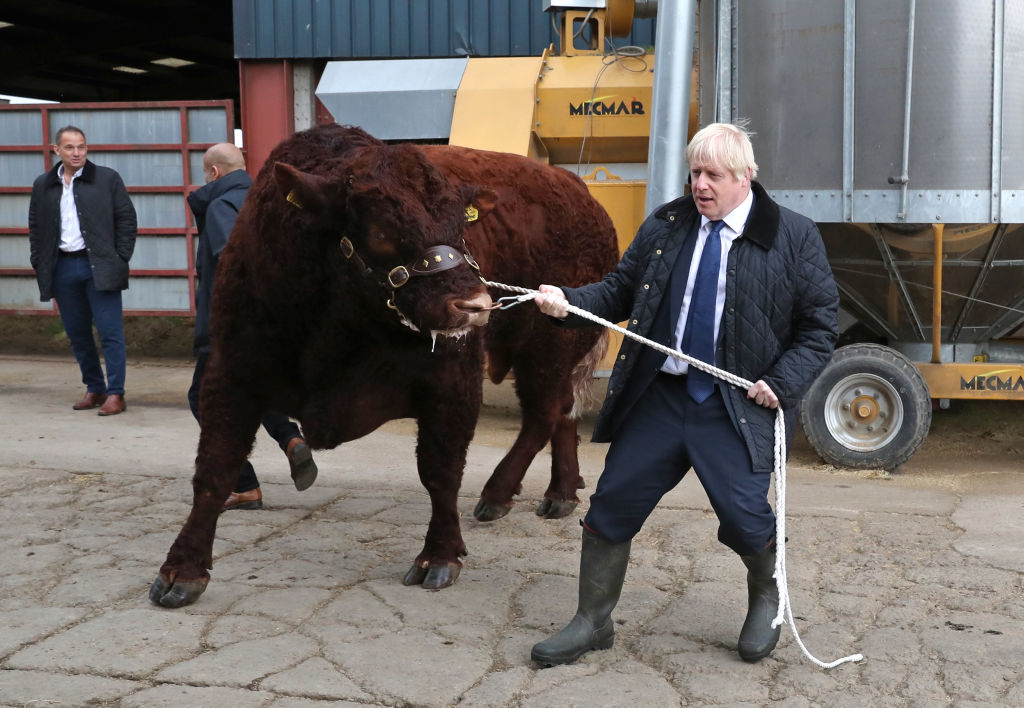 A bullish Boris Johnson offers caption writers a visual metaphor ahead of his high-steaks ... er, high-stakes week.