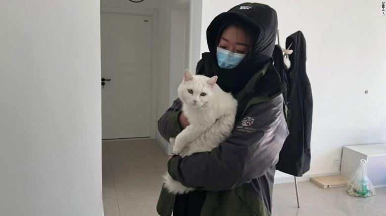 A member of Vshine tends to a pet cat that was left behind during the coronavirus outbreak in Wuhan.