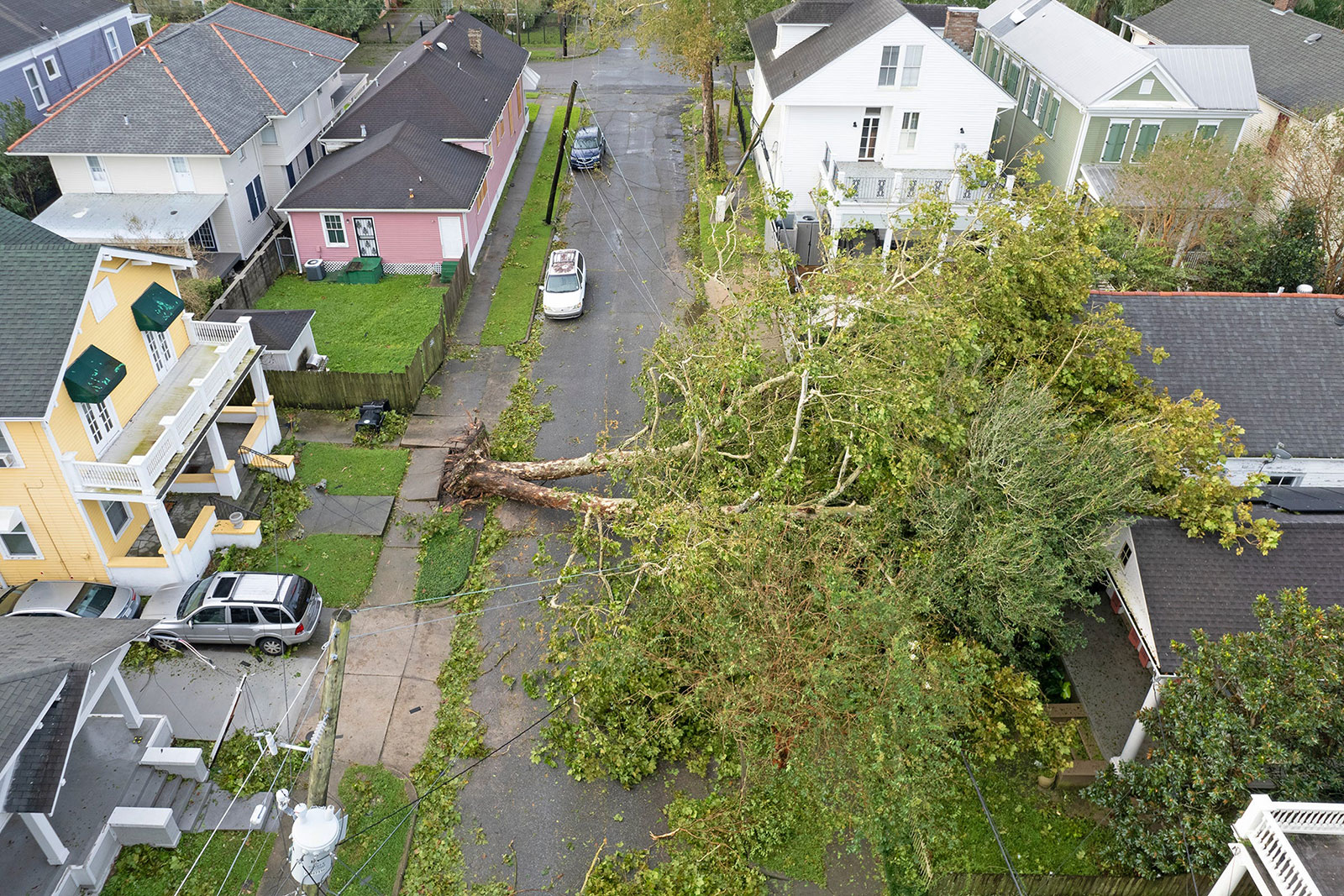 A tree lies on a house in the Uptown neighborhood of New Orleans on Monday, August 30.