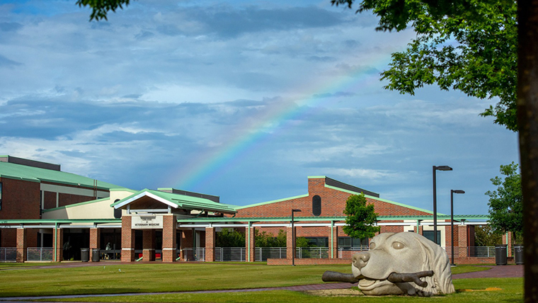 NC State College of Veterinary Medicine & Veterinary Hospital/Facebook